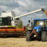 Grains preparing for a breakout