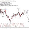iShares MSCI Brazil Index ETF (EWZ) Update